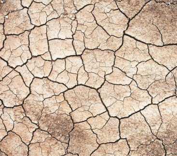 Stop suszy – pierwszy taki plan w Polsce  avatar