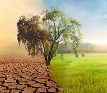 Czy Polacy boją się skutków zmian klimatu? avatar
