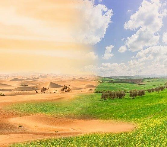 Rozpoczął się szczyt klimatyczny ONZ – COP 24