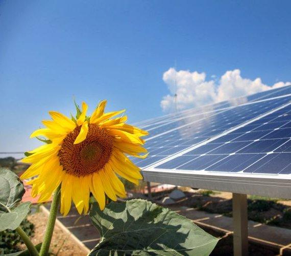 Jak wykorzystać odnawialne źródła energii w domu?