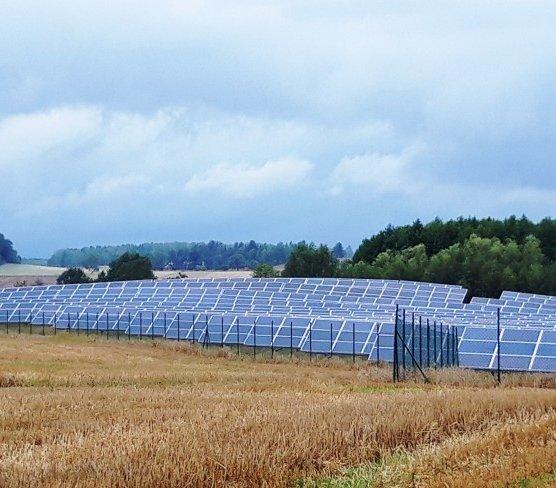 Zgorzelec: farma fotowoltaiczna z 3 tys. paneli