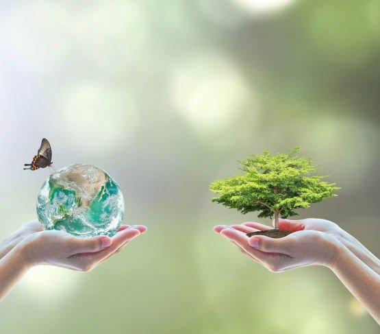 Ponad 164 mln euro na ochronę środowiska w Polsce
