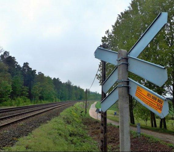 Pociągi do Trójmiasta i Bydgoszczy przyspieszą. Jeśli będą pieniądze