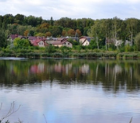 Remediacja stawu Kalina: największy taki projekt w Polsce