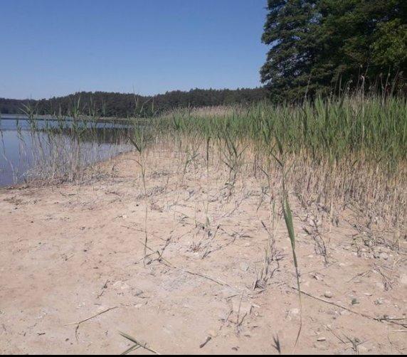 Jezioro Głębokie bez wody. Spuściła ją elektrownia wodna