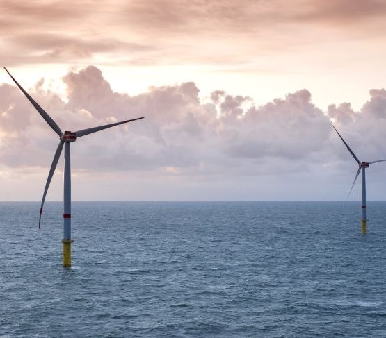 Powstaną pierwsze morskie farmy wiatrowe w Brazylii
