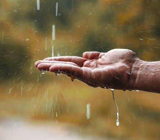 Małopolska będzie zbierać deszczówkę. Rusza program