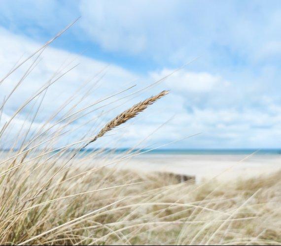 Baltic Pipe na duńskim lądzie