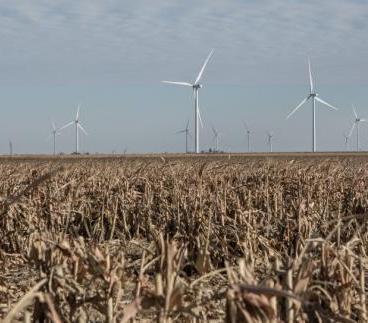 Ta farma będzie produkować energię dla Google