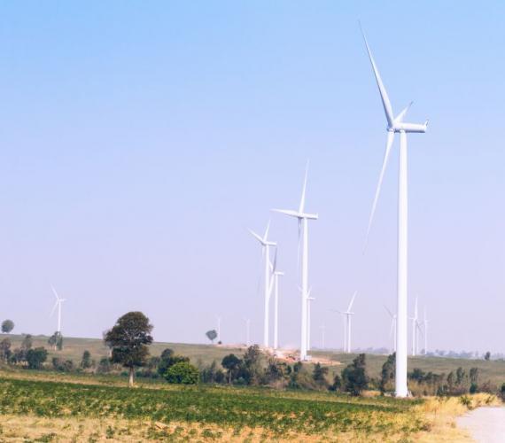 Google w 100% będzie korzystać z odnawialnej energii