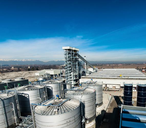 Perspektywy rozwoju biopaliw drugiej generacji w oparciuo uprawy celulozowe