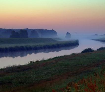 Dolny Śląsk: trwa przebudowa 11 km wałów przy Odrze