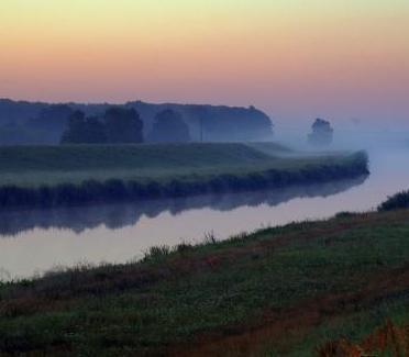 the-fog-1534528_960_720