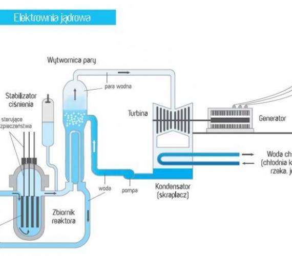 Schemat przedstawia proces powstawania energii z atomu. Z archiwum www.poznajatom.pl