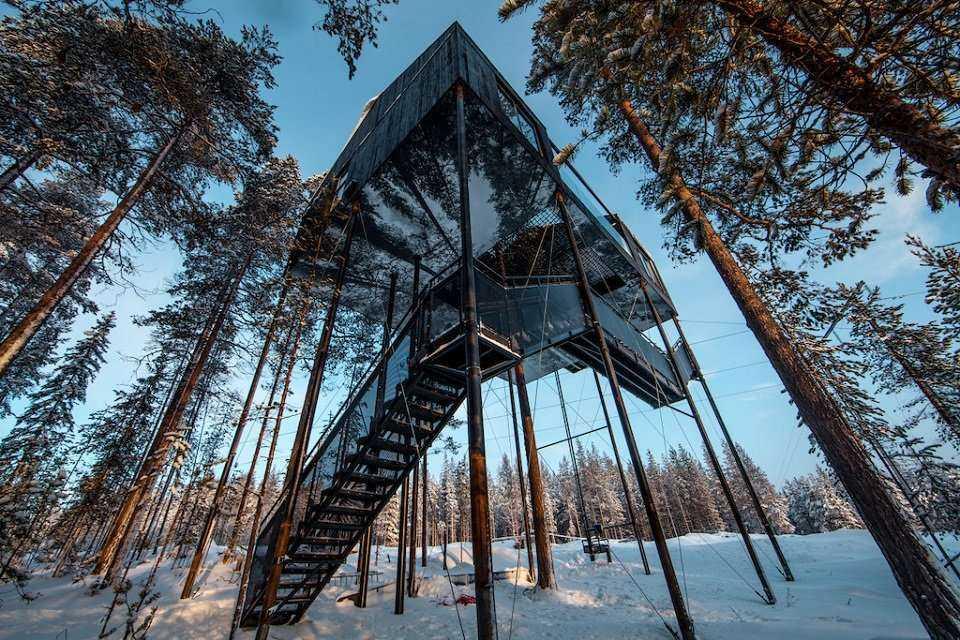 Szwecja: luksusowy hotel na drzewie [galeria]