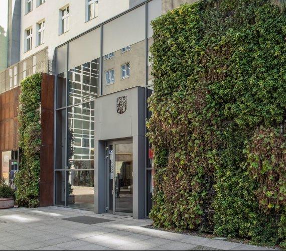 Zielone ściany sposobem na nadmiar wody opadowej