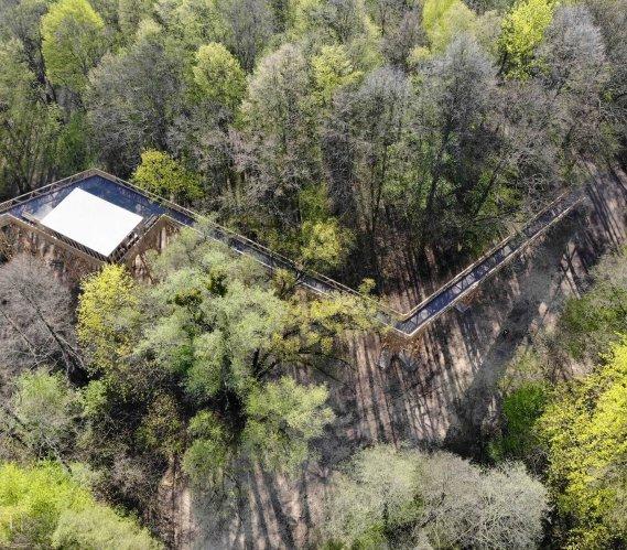 Ścieżka w koronach drzew w dolinie Szklarki