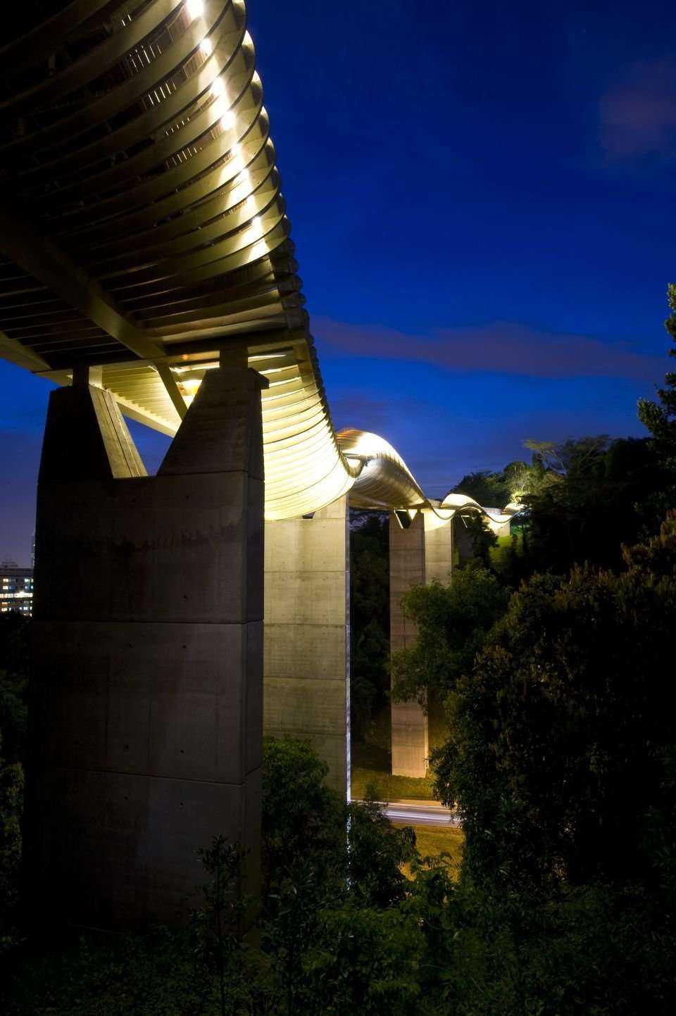 Henderson Waves  - most dla pieszych w Singapurze