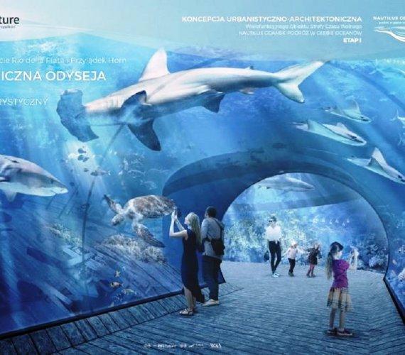 Takie będzie Oceanarium Nautilus w Gdańsku